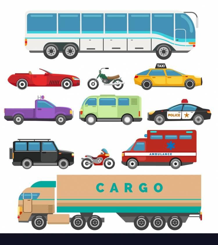 C D E Sınıfı Ehliyet Trafik sınav soruları
